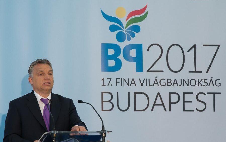 2017-es vb