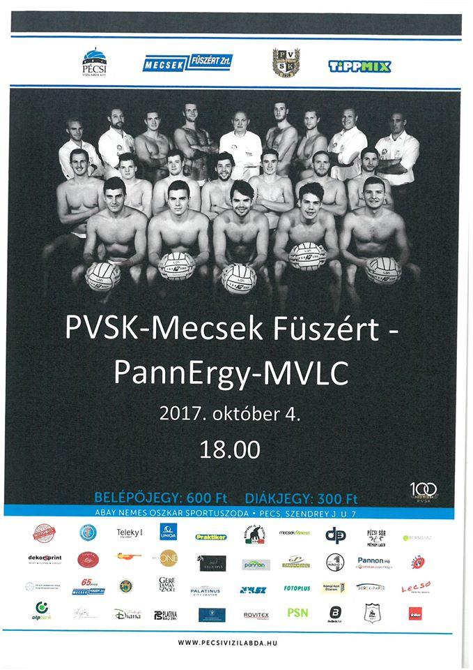 PVSKplakat2017
